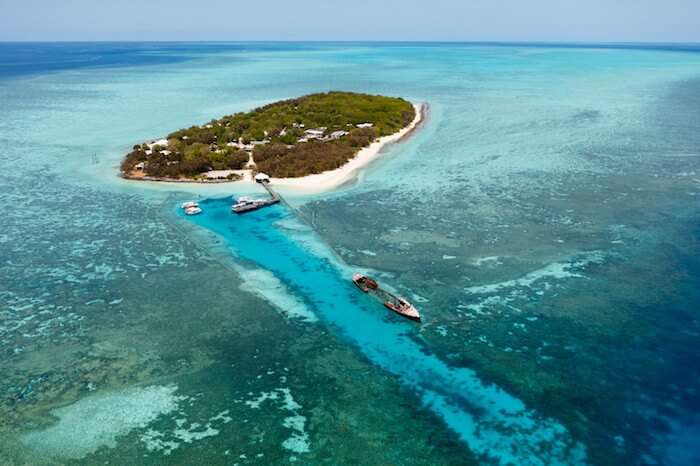 Scuba & Free Diving on Heron Island, The Great Barrier Reef 2