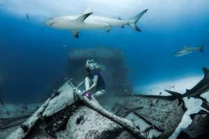 Liz Parkinson- Fierce Freediver and Shark Activist 2